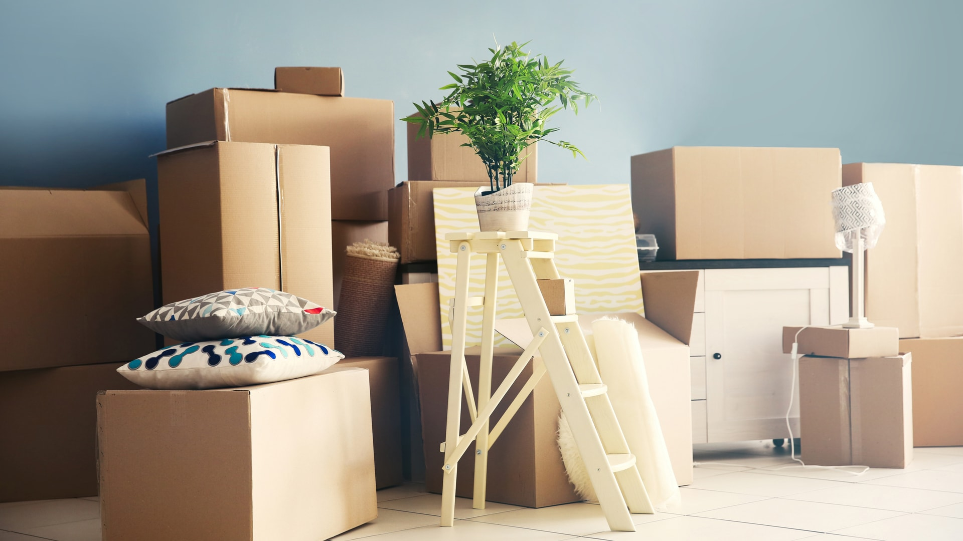 10 Easy Tips For Packing Your Apartment Platinum Properties