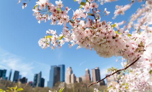 April NYC Calendar of Events